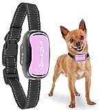 GoodBoy Pequeño Collar de Corteza de Perro sin Choque Recargable e Impermeable Cortaviento Vibrante para los Perros pequeños y medianos 2,5 + kg 12 cm-48cm (Rosado)