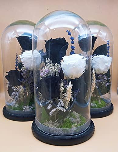 Rosas eternas Negras. Rosa eterna Blanca. Cúpula Cristal. Altura 30 cm. Cúpula BLANQUINEGRA. Rosas Negras eternas preservadas. Hecho en España