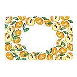 100 étiquettes pour confitures - Abricots