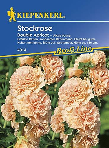 Kiepenkerl 4014 Stockrose Double Apricot (Stockrosensamen)