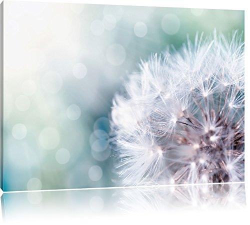 Zauberhafte Pusteblume, Format: 120x80 auf Leinwand, XXL riesige Bilder fertig gerahmt mit Keilrahmen, Kunstdruck auf Wandbild mit Rahmen, günstiger als Gemälde oder Ölbild, kein Poster oder Plakat
