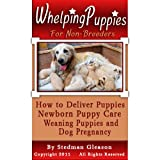 Whelping Puppies For Non-Breeders: How to Deliver Puppies, Newborn Puppy Care, Weaning Puppies and Help with Dog Pregnancy