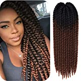 22 inch Havana Twist Crochet Hair Mambo Twist for Braids Hair Ombre Seneglese Twist Crochet Braids Hair 5Pack (1B 30)