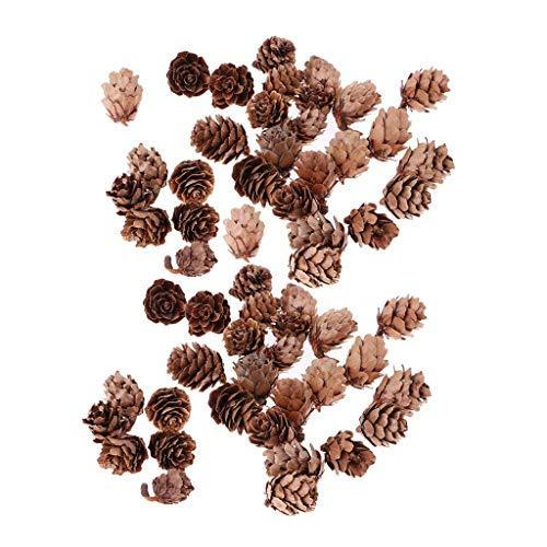 Vektenxi 60 Stücke Mini Natürliche Rustikale Getrocknete Tannenzapfen In Groß Für Weihnachtsfeier Ornament DIY Dekoration Hohe Qualität