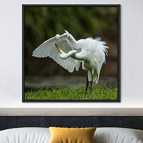 "bestdeal depot Bird Framed Canvas Wall Art Prints for Living Room,Bedroom Framed Artwork Decoration Ready to Hang - 16""x16"" inches"