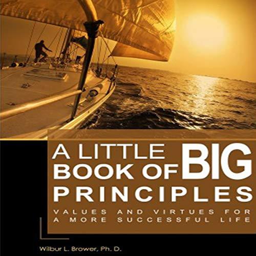A Little Book of Big Principles audiobook cover art