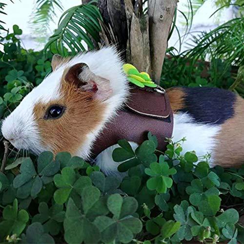 Chinchilla-Leine, Chinchilla-Geschirr aus weichem Leder + Polyester, niedlich verstellbar, verschleißfest atmungsaktiv für Chinchilla mit Eichhörnchen-Hamster und goldenem Stern(S)