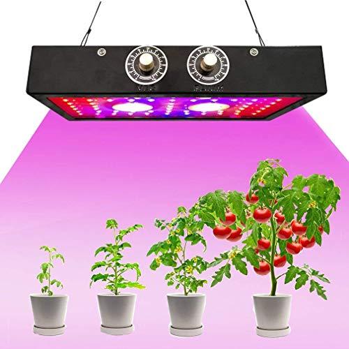 Lámparas LED de cultivo de plantas de 1500 W, COB regulable, espectro completo, chip doble, luces para plantas de interior, vegetales, flores, plantas de semillero Phyto lámpara Veg Bloom con enchufe