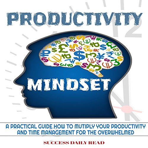Productivity Mindset audiobook cover art