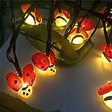 Lifet Guirlande Lumineuse à 20 LED pour intérieur et extérieur Motif Coccinelle, Polyester, coloré, Approx. 45x45cm