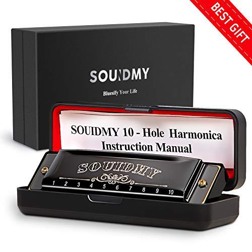 Best 20 Hole Harmonicas