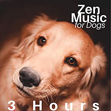 3 Hours of Zen Music for Dogs