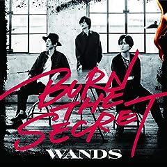 WANDS「アイリメンバーU」の歌詞を収録したCDジャケット画像