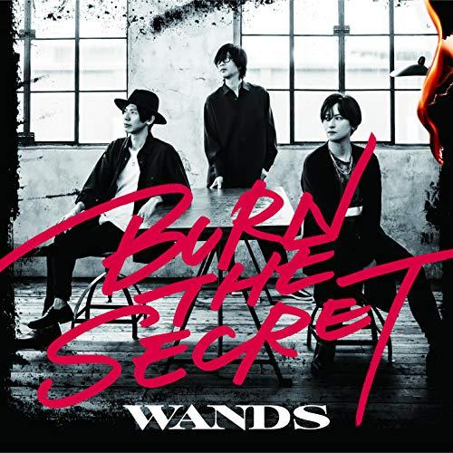 「BURN THE SECRET」通常盤 (CD)