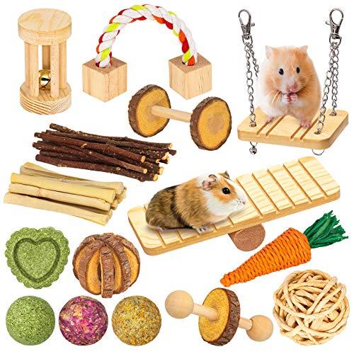 Guinea Pig 15 Piece Toy Set