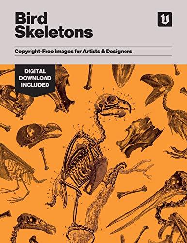 Bird Skeletons: Copyright-Free Images for Artists & Designers
