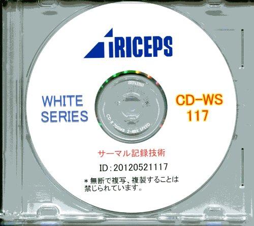 文献調査資料CD-R サーマル記録技術 [CD-ROM]の詳細を見る