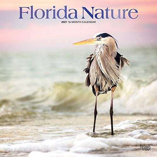 Florida Nature - Floridas Natur 2021 - 16-Monatskalender: Original BrownTrout-Kalender [Mehrsprachig] [Kalender] (Wall-Kalender)