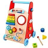 Andador Baby - Carrinho Multifunção - Tooky Toy