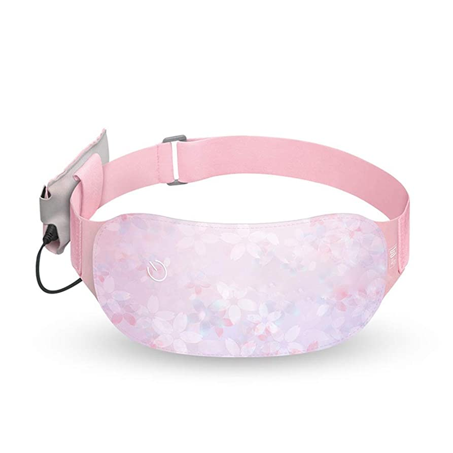 安全性同一の織機3温度によるウエストベルトを温める月経痛腰胃の痛みを軽減するためのポータブル暖房腰パッド 腰痛保護バンド (色 : ピンク, サイズ : Free size)