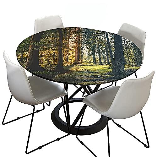 Morbuy Rund Tischdecke Elastisch, 3D Wald Rund Tischdecken Wasserdicht Lotuseffekt Abwaschbar Abwischbar Tischtuch für Dekoration Küchentisch Garten Outdoor (Nordische Wälder,Durchmesser 150cm)