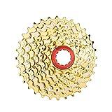 Cassette De Acero para Bicicleta De Montaña De 8 Velocidades, Piezas De Piñón De Rueda Libre para Bicicleta MTB 8S para M410 M360 M310 M280 301g Cassettes y piñones (Color : 8S 32t Gold)