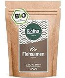 Flohsamen Bio 1kg, ganz - 1000g - Laktosefrei, Glutenfrei, vegan - Abgefüllt und kontrolliert in Deutschland