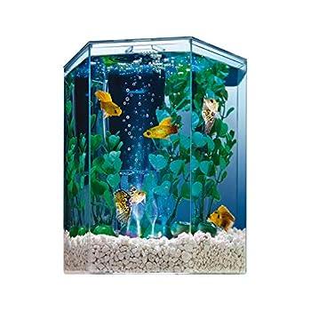 Best tetra bubbling led half moon aquarium instruc Reviews