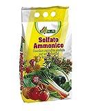 Sulfato de amonio, fertilizante nitrogenado, en bolsa de 5 kg