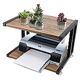 FADDA Wood Printer Stand, Multipurpose Storage Shelf for Home, Office, Printer Desk with 4 Cushion,...
