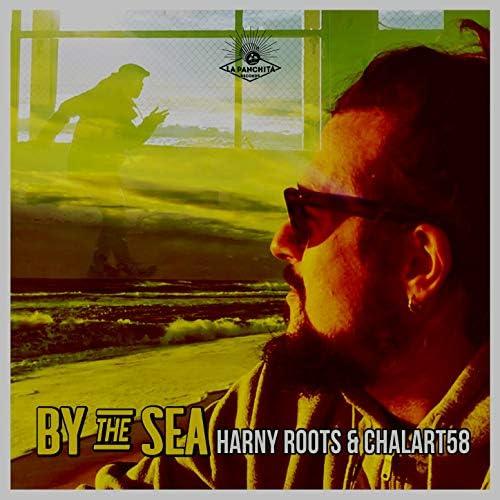 Harny Roots & chalart58
