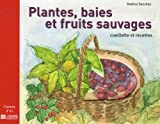 Plantes, baies et fruits sauvages