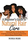 A Beginner's Guide to Natural Hair Care: 50+ Homemade Hair Care Recipes Plus Comprehensive Tips for Maintaining the Beauty, Shine & Styling of Textured Hair
