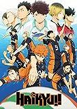 Tainsi Asher Gift Poster Haikyuu Anime Manga, matt,