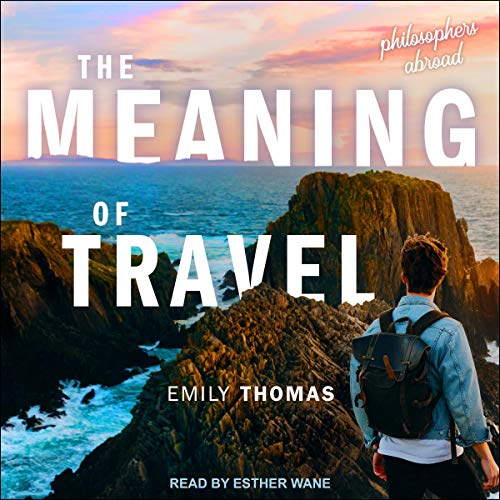 The Meaning of Travel audiobook cover art