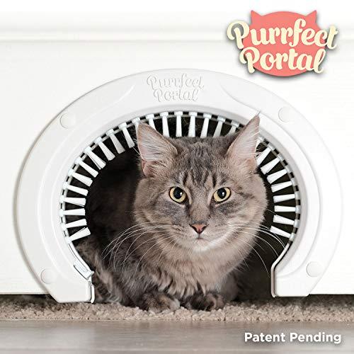 Purrfect Portal Katze Tür für Innentüren mit Fellpflege Bürste:: Großer Pet Cat Pass für Erwachsene Katzen bis zu 20lbs Katze Tür mit Bürste W/Ausführliche Anweisungen Plus Schrauben & Schraube von