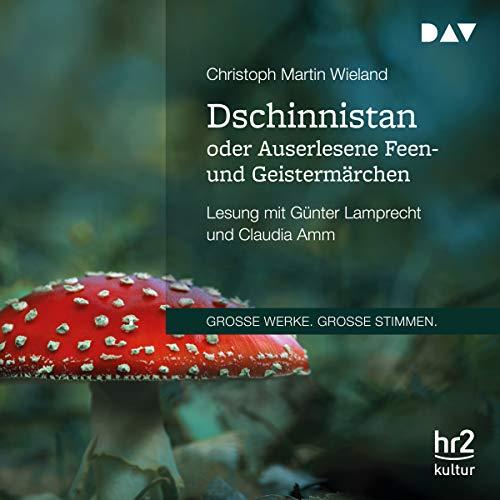Dschinnistan oder Auserlesene Feen- und Geistermärchen audiobook cover art