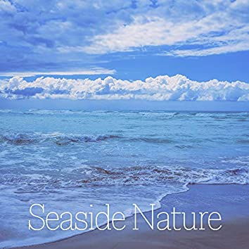 Seaside Nature – Relaxing Music with Seaside Sounds of Nature