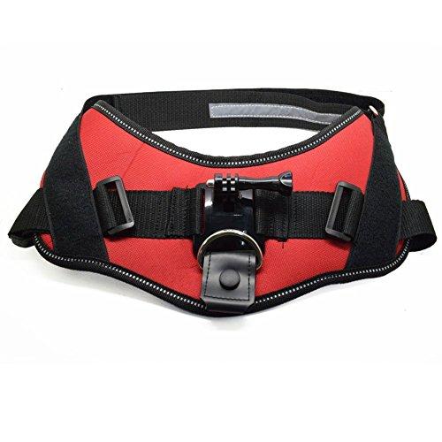 HopCentury Hond Harnas met Camera Mount Houder en Lange Schroef GoPro Accessoires voor GoPro Hero 4 3+ 3 2 1 Camera's
