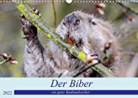 Der Biber, ein guter Bauhandwerker (Wandkalender 2022 DIN A3 quer): Ein schoene Begegnung mit einem, der nur nachts unterwegs ist. (Monatskalender, 14 Seiten )