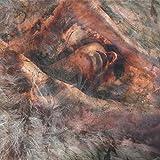 When Forever Comes Crashing [Explicit] (Demo)