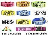 """Dexil Personalisierbares Hunde-Halstuch, Aufschrift """"Friendly"""", Grün, modisches Halstuch, verhindert Unfälle durch Vorwarnen anderer Hunde - 4"""