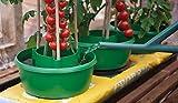 Garland Green Plant Halos 3 x Pots Watering Crop Support Planter