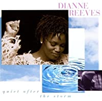 Quiet After the Storm by Dianne Reeves (2004-01-01)