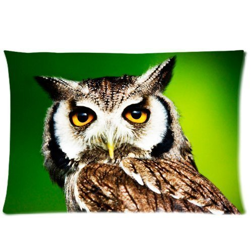 Denise Love Bright Owl Big Eyes Pillow Hülles Cover,pillow covers for couch 20x30inch (Two sides)