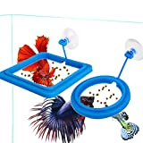 2 Pcs Fish Feeding Ring, Fish Safe Floating Food...