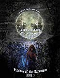 Dragon and Mr. Sneeze: Witches of the Horseshoe Book 3 (A Southern Coming of age Fantasy Story)
