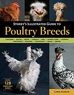 Storey's Illustrated Guide to Poultry Breeds: Chickens, Ducks, Geese, Turkeys, Emus, Guinea Fowl, Ostriches, Partridges, Peafowl, Pheasants, Quails, Swans by [Carol Ekarius]