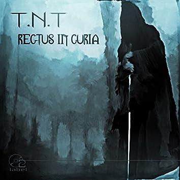 Rectus In Curia