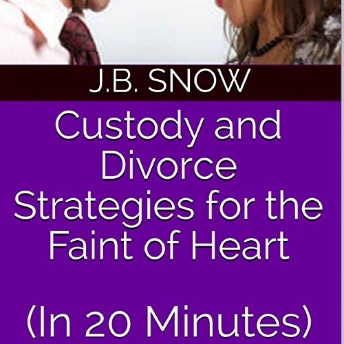 Custody and Divorce Strategies for the Faint of Heart (In 20 Minutes) audiobook cover art